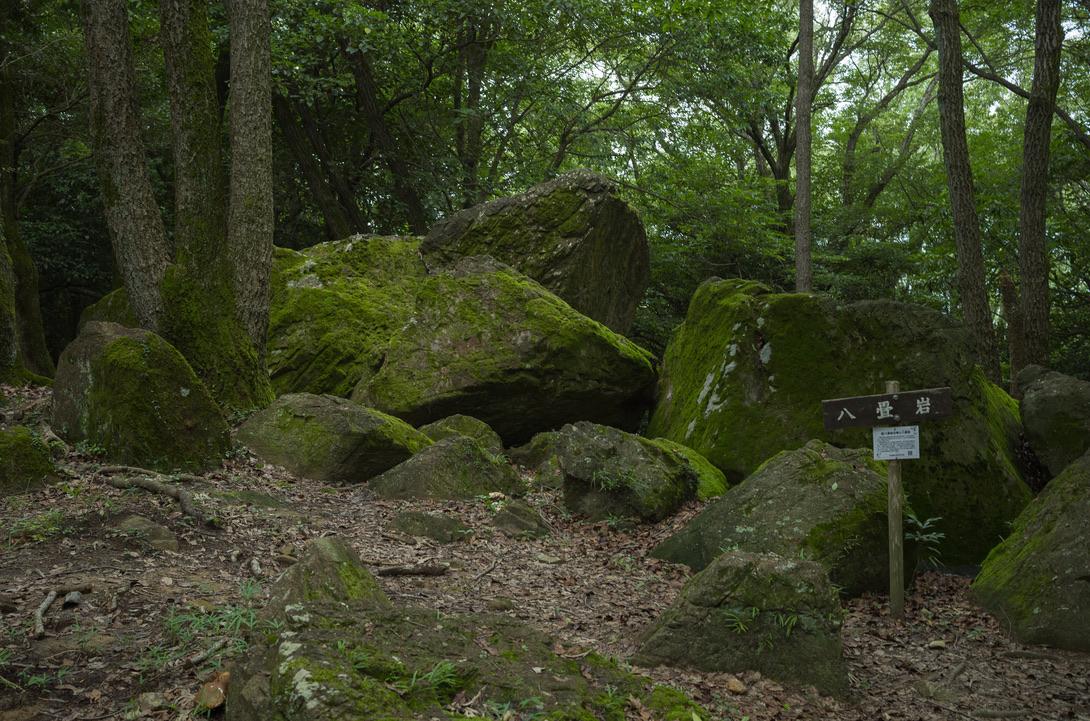 御神山には、様々な岩群があります。それらは、古墳時代に祭りの場所だったり、古墳だったりして、歴史的にも研究対象になっています。