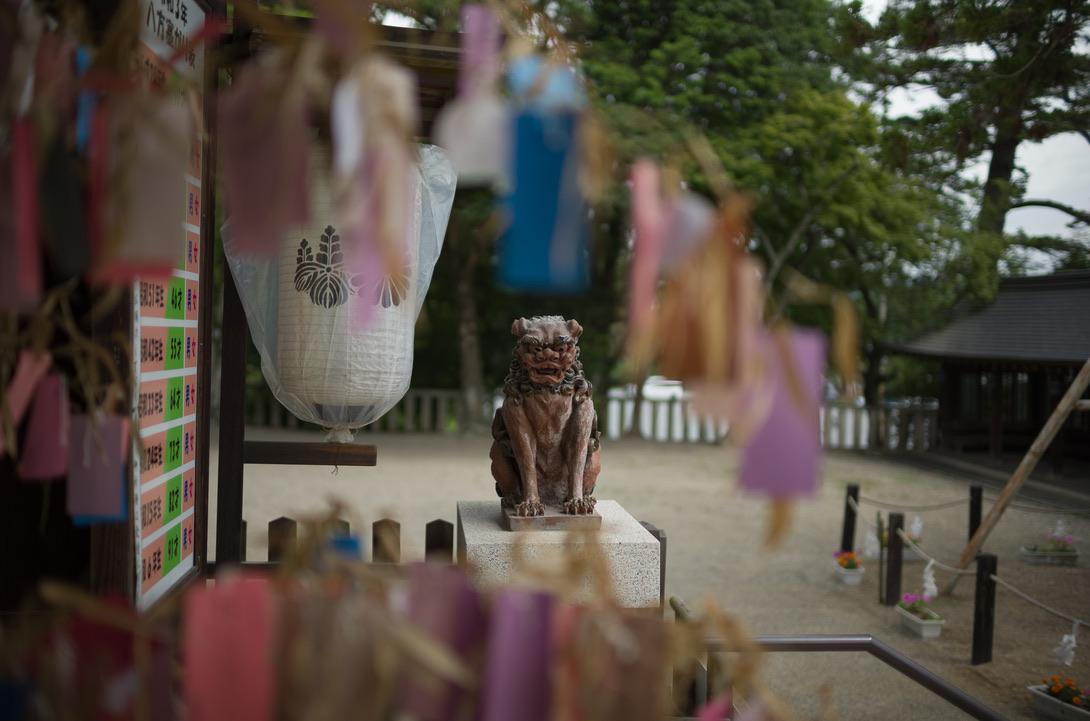 吉備津彦神社の狛犬って、何だか可愛いので必ず撮ってしまいます。