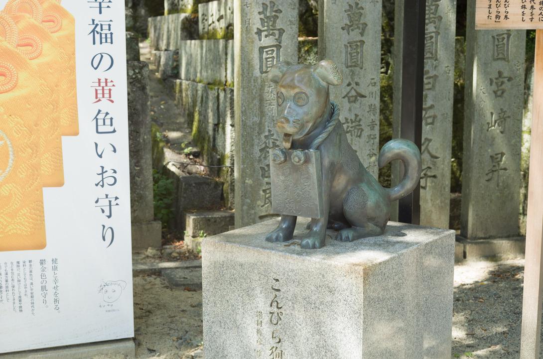 今回は香川県の『こんぴらさん』に行きました。江戸時代には、こんぴらさんに行けない他国の庶民は、代わりに飼い犬に行ってもらったとか…。