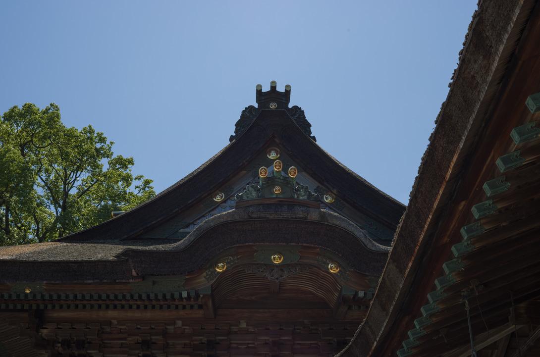 F11ぐらいに絞り込んで撮りました。建物は当たり前として、右奥の葉っぱの解像感がヤバイぐらい写っています。